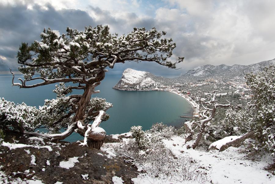 Отдых в Крыму на Новый год